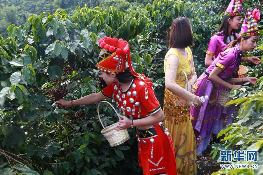 第五届中国芒市(国际)咖啡文化节开幕