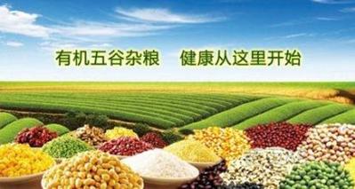 天然食品神,返扑又归真——2016上海有机食品展